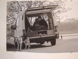 Schildersbus en schildershond