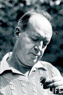 Nabokov met vlinder